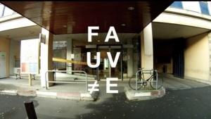 FAUVE - SAINTE-ANNE